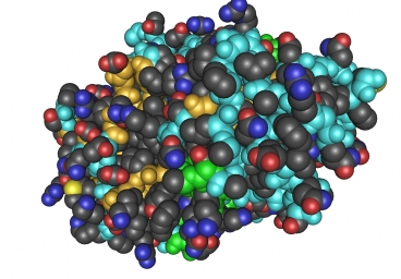 nanoescale