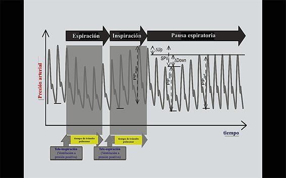 Fig1-TRADUCIDA