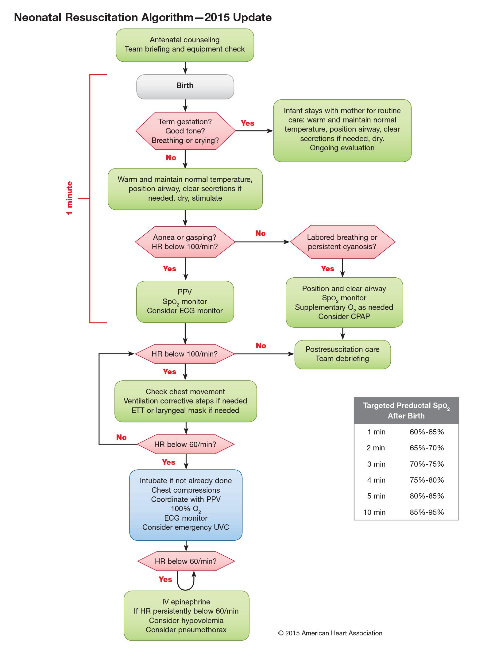 Figura 1 - Algoritmo-RCP-Neonatal - AHA