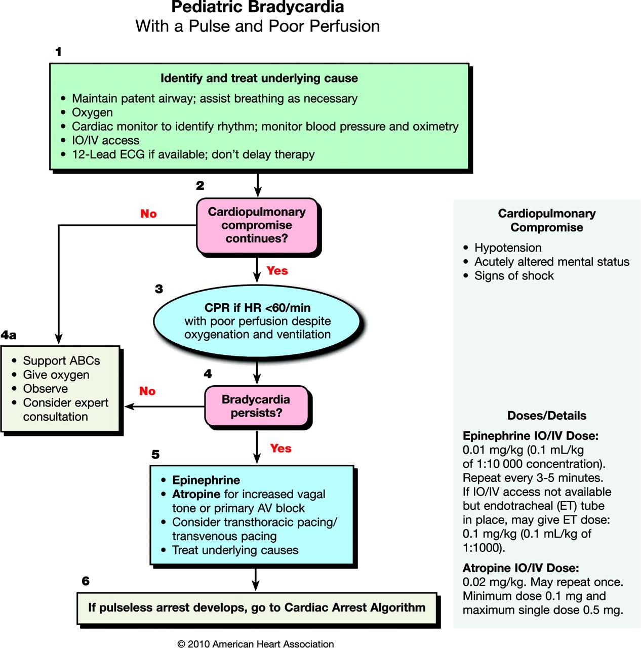 Infusion Systems Perspective : Soporte vital avanzado en el paciente pediátrico