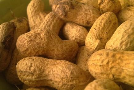 ¿Podemos administrar propofol a pacientes alérgicos al cacahuete?