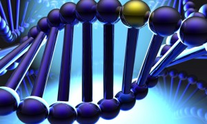 Golden gene in DNA