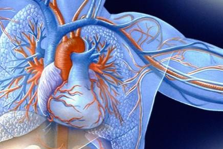 Nuevas troponinas ultrasensibles en la detección del Sindrome Coronario Agudo (SCA)