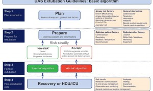 DAS extubation guidelines basic algorithm