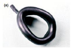 figura 1 - manguito mascarilla goldman - LMA