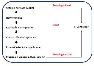 Figura 1 - NAVA