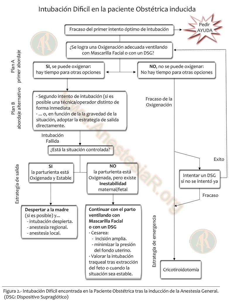 diagrama 2 p