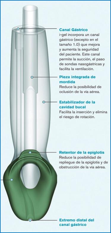 i-gelR-3