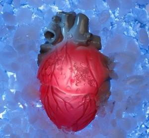 heartmain-300x278