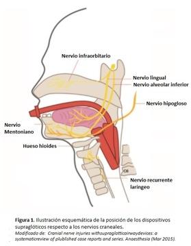 lesion-craneal