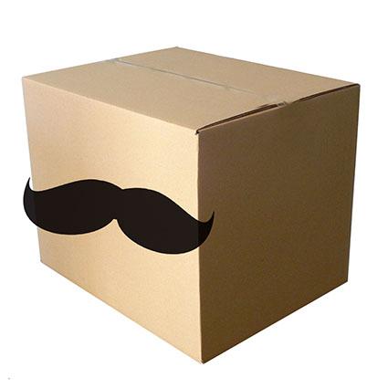 Una caja con bigotes. El gráfico de caja