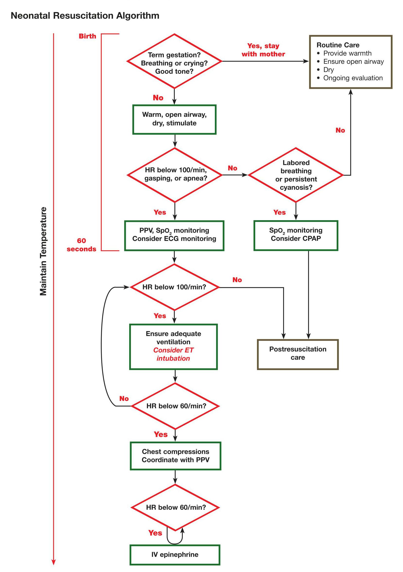 Algoritmo RCP Neonatal - ERC