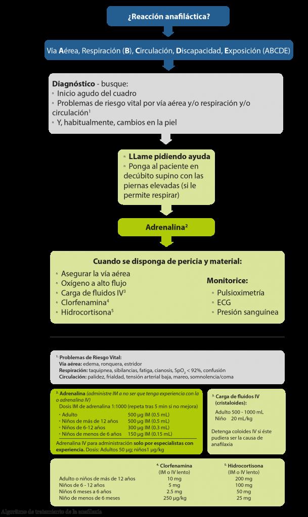 Algoritmo de tratamiento de Anafilaxia - ERC