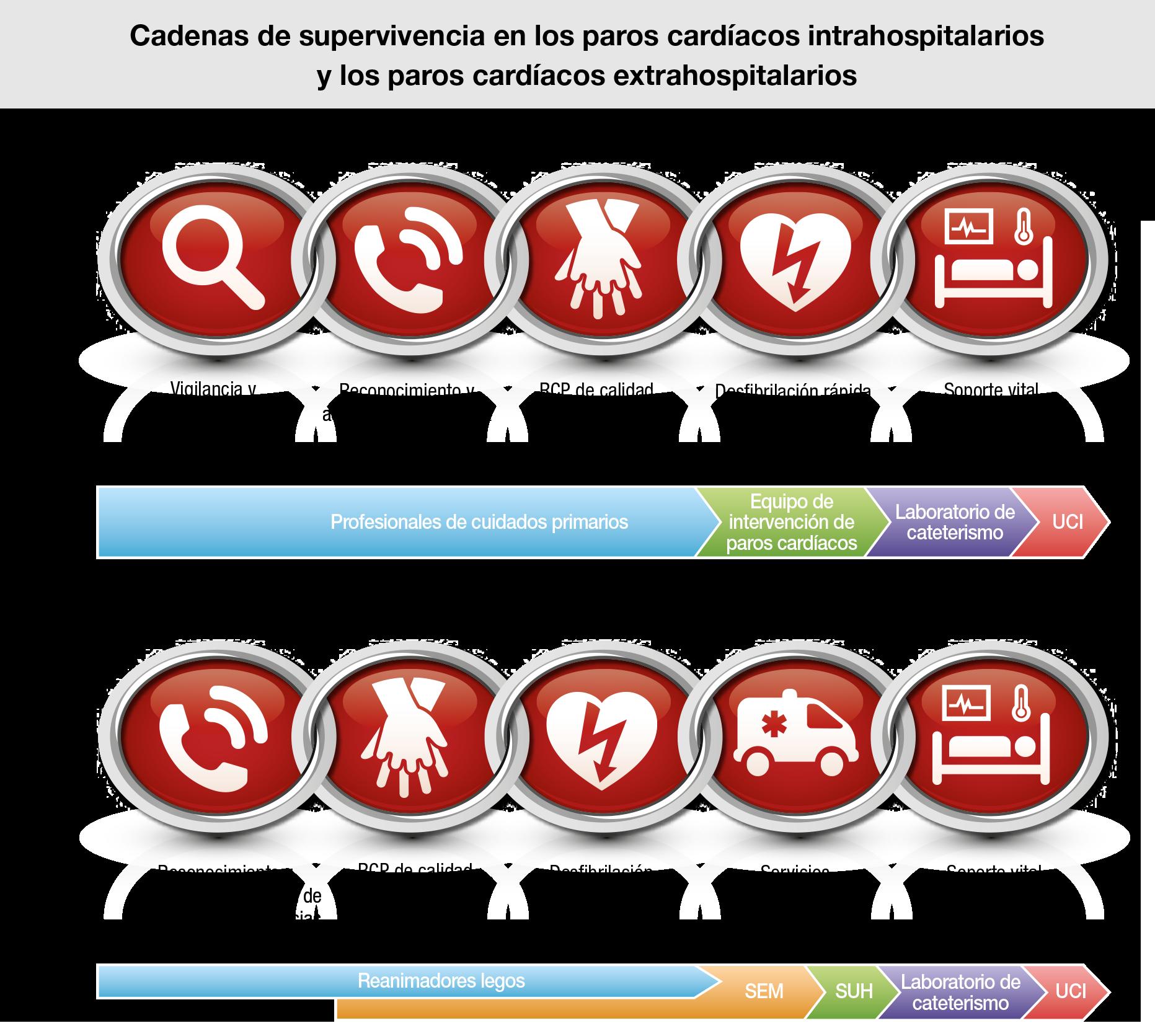 Cadena de Supervivencia - ILCOR 2015