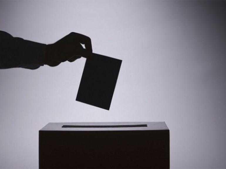 elecciones SEDAR