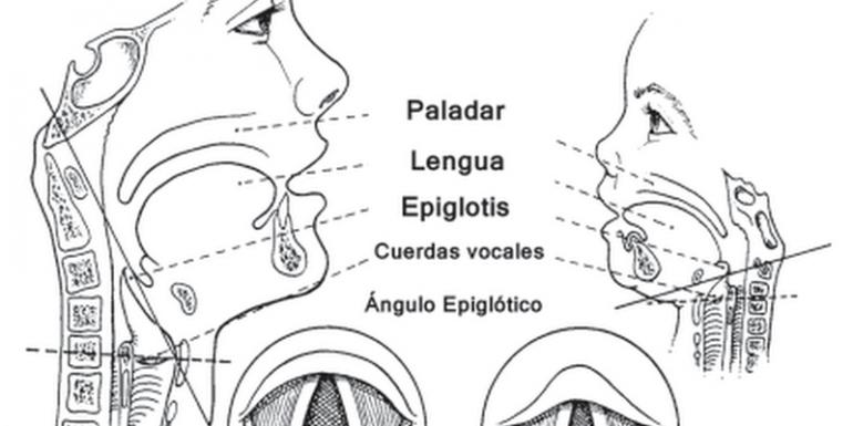 Aspectos prácticos en el manejo de la VAD Pediátrica - AnestesiaR